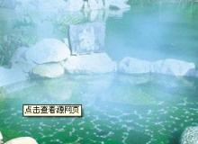 温泉度假村_温泉特点_温泉常识_温泉资讯